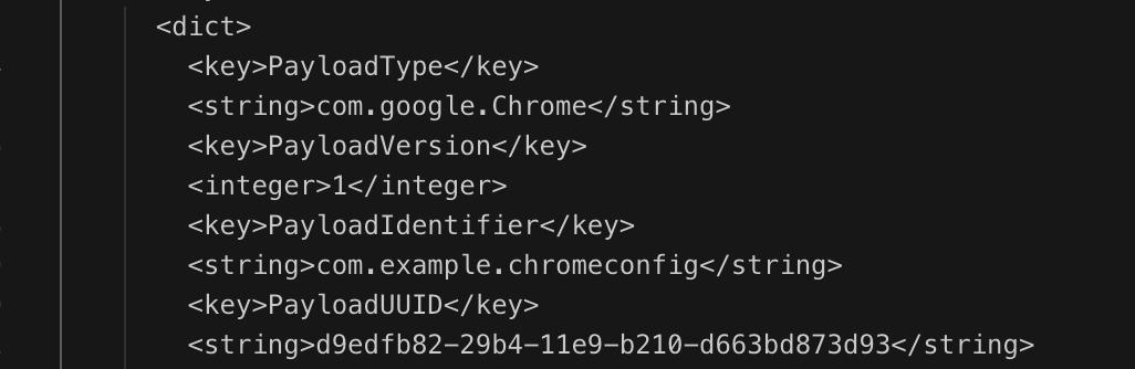 payloadidentifierinconfig
